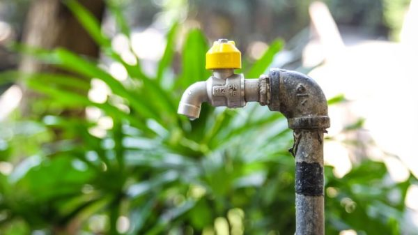 Spring Plumbing Tips: Post-Winter Survival Checks