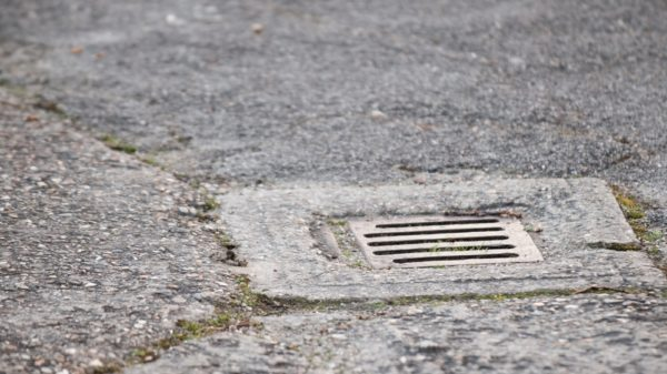 Preventing blocked drains