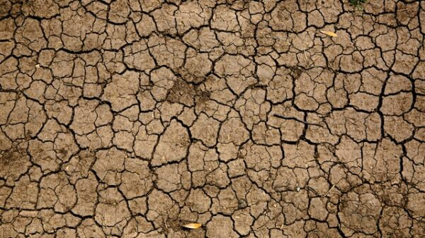 Climate Change: How Droughts Could Affect Our Food